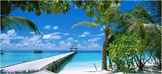 Fondo Maldivas