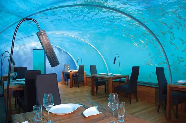 Ithaa el primer restaurante submarino del mundo for Hotel bajo el agua precio