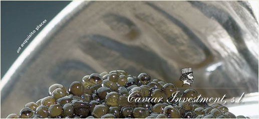 Caviar Iraní