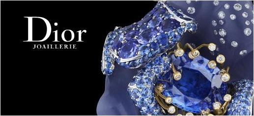 Le Bal Des Roses de Dior