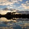Doñana Experience, la primera experiencia fotográfica realizada en España para probar la cámara Phase One