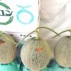 Los Bocados Gourmet más caros del mundo. Melones Yubari
