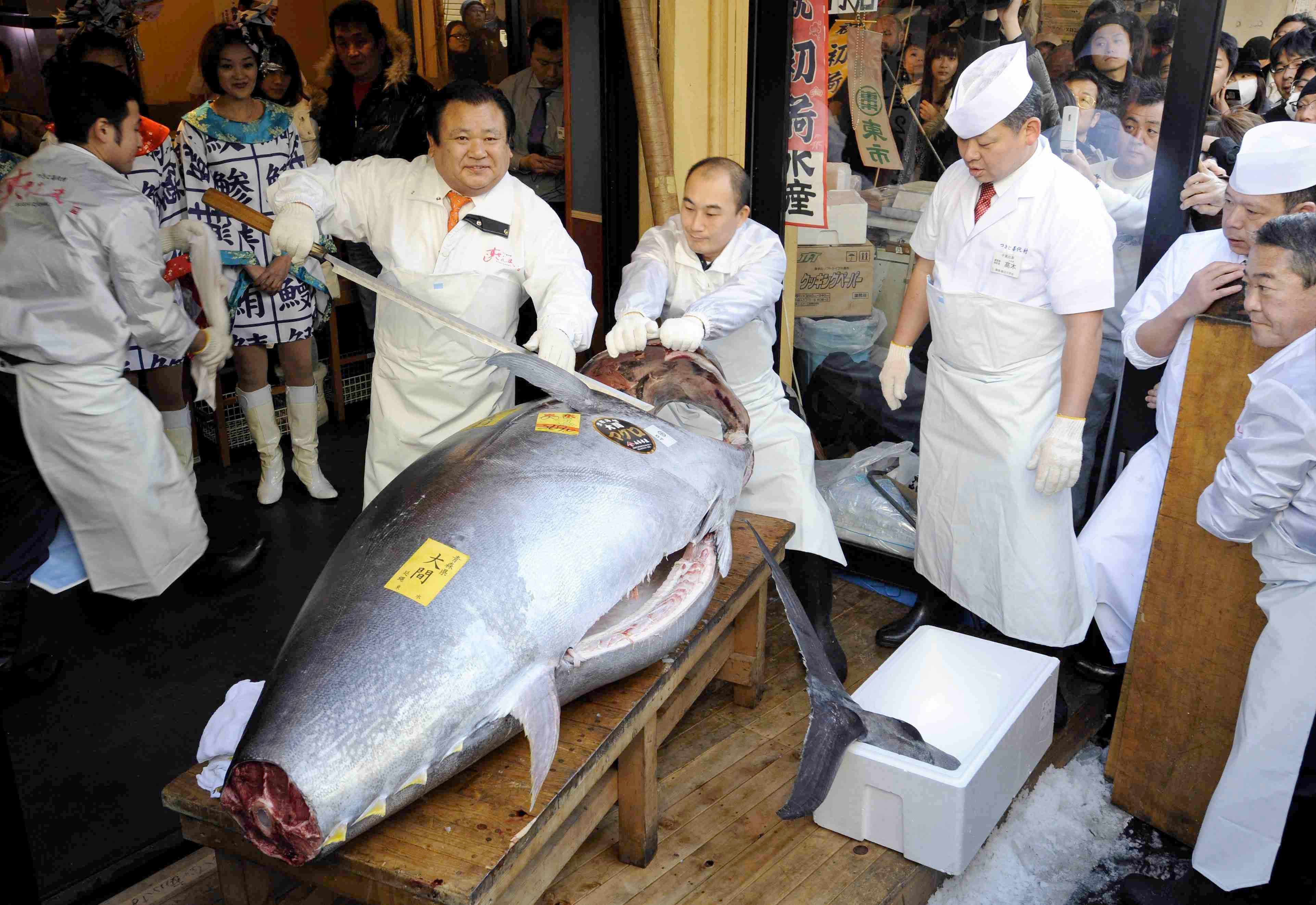 El atún rojo más caro del mundo