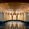 Vivanco: bogeda, fundación, experiencias. Sala de tintos roble francés