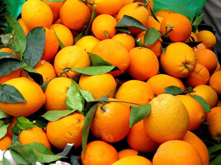 Frutas y verduras online - La nueva tendencia